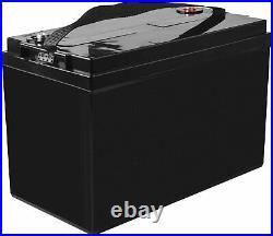 ULTRAMAX 12v 100Ah LiFePO4 Batterie Pour Télécommande Voitures, Bateaux, Avion